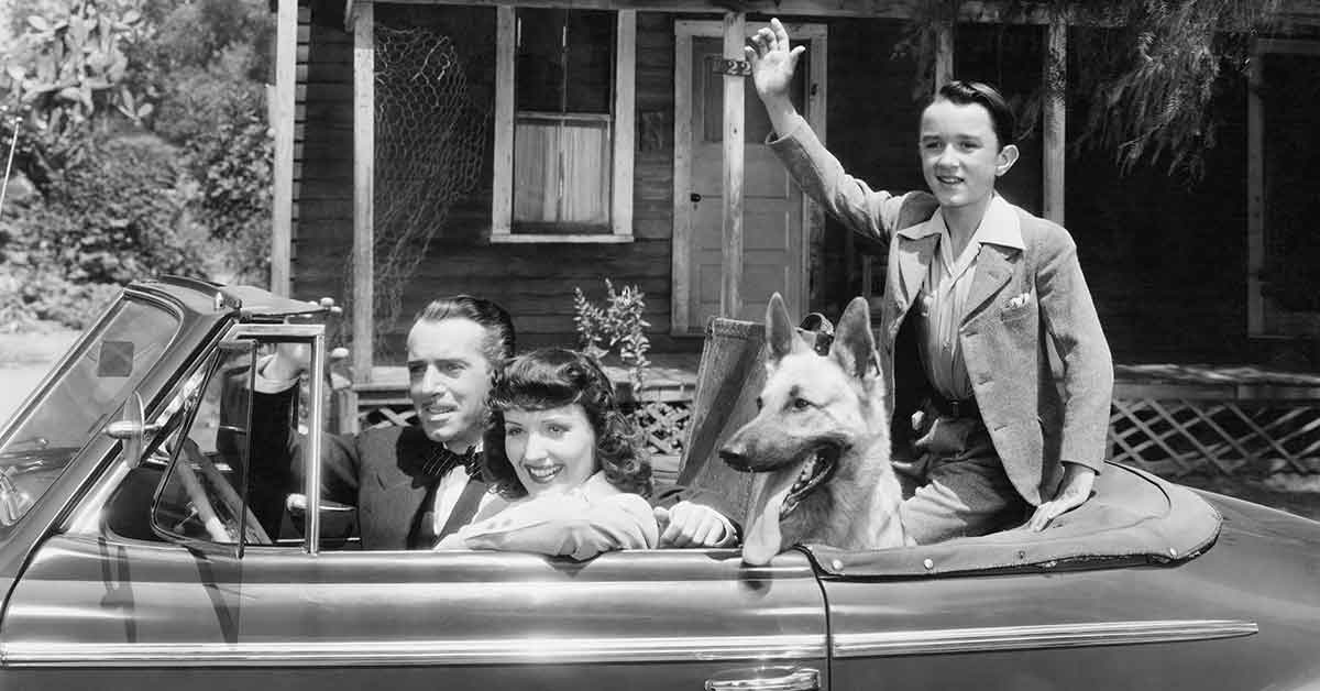 The Most Popular Dog Breeds Through the Mid-Century Years